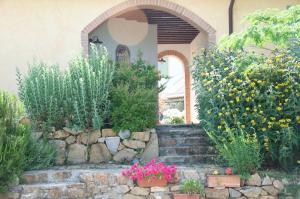 Agriturismo QuartoPodere, Farmházak  Magliano in Toscana - big - 37