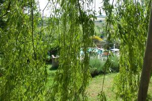 Agriturismo QuartoPodere, Farmházak  Magliano in Toscana - big - 31