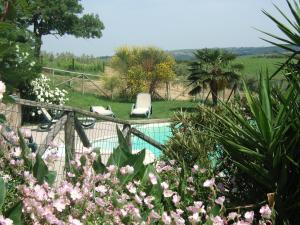 Agriturismo QuartoPodere, Farmházak  Magliano in Toscana - big - 34
