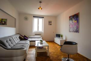 Cosy Flat Pisek Downtown, Appartamenti  Písek - big - 12