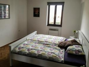 Cosy Flat Pisek Downtown, Apartments  Písek - big - 16