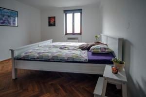 Cosy Flat Pisek Downtown, Appartamenti  Písek - big - 17