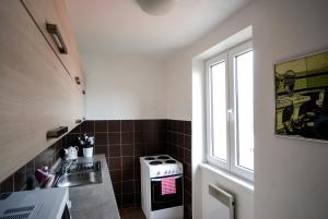 Cosy Flat Pisek Downtown, Appartamenti  Písek - big - 20