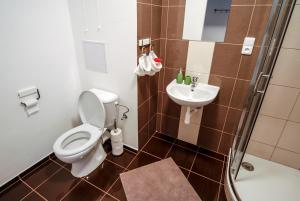 Cosy Flat Pisek Downtown, Appartamenti  Písek - big - 24