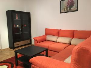 Carpathian Apartment, Apartmány  Brašov - big - 5