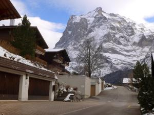 Apartment Casa Almis 3, Appartamenti  Grindelwald - big - 6