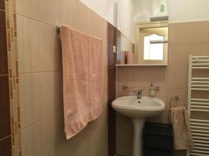 Carpathian Apartment, Apartmány  Brašov - big - 11