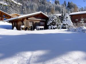 Chalet Chalet Lorila, Holiday homes  Arveyes - big - 17