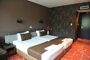 Medite Resort Spa Hotel, Hotely  Sandanski - big - 4