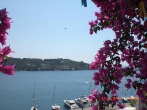 Babis, Hotely  Skiathos Town - big - 66