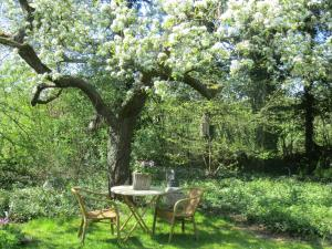B&B Rezonans, Bed & Breakfast  Warnsveld - big - 44