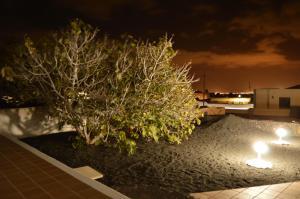 Casa Alba, Holiday homes  Nazaret - big - 11