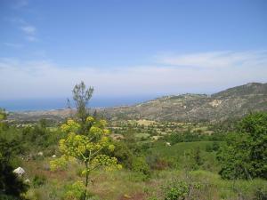 Paradisos Hills (34 of 59)