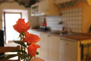 La Stregatta, Bed & Breakfasts  Triora - big - 22