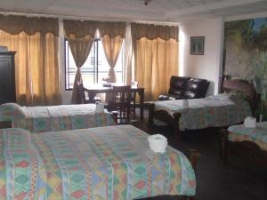 Hotel El Tucan, Hotels  Alajuela - big - 2