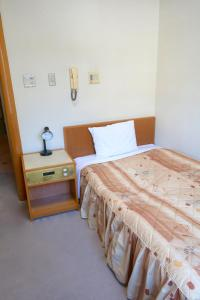 Inuyama International Youth Hostel, Хостелы  Inuyama - big - 8