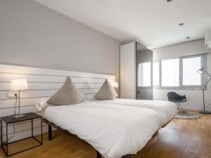 One Bedroom Penthouse with Terrace- Rambla Catalunya