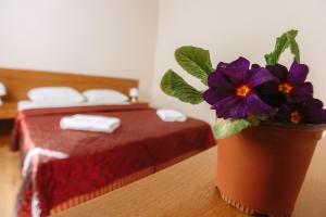 Havana Hotel, Hotely  Adler - big - 8