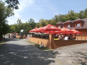 La Rosa na Vinianskom jazere, Guest houses  Vinné - big - 33