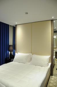 Senator Hotel, Hotels  Tirana - big - 4