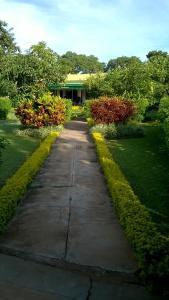 Longonot 43 - Lodge, Лоджи  Lilongwe - big - 28