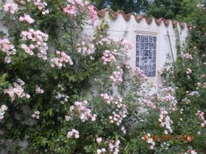 Le Moulin de Larcy (11 of 29)