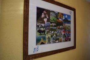 Hotel El Tucan, Hotels  Alajuela - big - 24