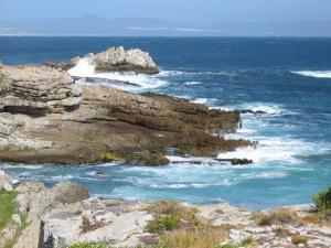 Zimmer Fynbos mit Meerblick