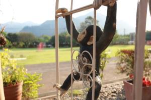 Phachuanchom Resort Khaoyai, Pensionen  Mu Si - big - 33