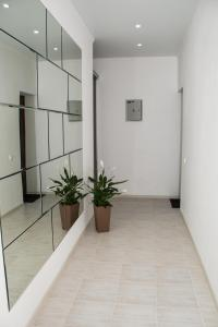 Apartment Solnechnyj gorod, Appartamenti  Adler - big - 6