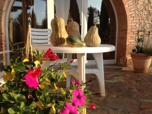 Podere Il Mulino, Bed and Breakfasts  Pieve di Santa Luce - big - 47