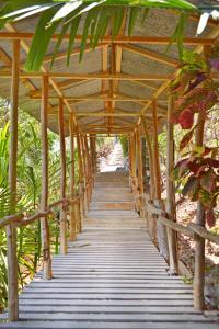 Blue Jay Lodge, Mal País