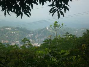 Hill Cottage, Ubytování v soukromí  Kandy - big - 29