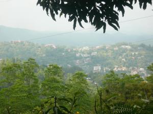 Hill Cottage, Ubytování v soukromí  Kandy - big - 30