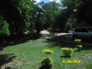 Longonot Guest House, Pensionen  Lilongwe - big - 60