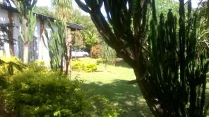 Longonot Guest House, Pensionen  Lilongwe - big - 58