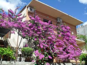 Apartments Katica 3465, Apartmanok  Makarska - big - 21