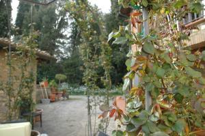 Il Roseto, Apartmány  Tavarnelle in Val di Pesa - big - 30