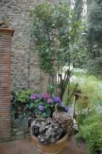 Il Roseto, Apartmány  Tavarnelle in Val di Pesa - big - 36