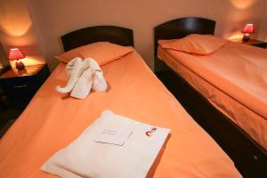 Hotel Ciric, Отели  Яссы - big - 21