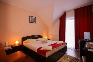 Hotel Ciric, Отели  Яссы - big - 24