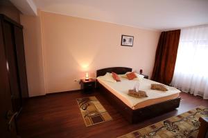 Hotel Ciric, Отели  Яссы - big - 23