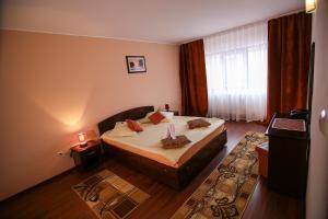 Hotel Ciric, Отели  Яссы - big - 20