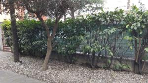 AroomS Affittacamere, Penzióny  Bergamo - big - 31