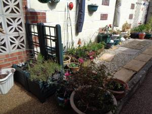 Lacey's Bed & Breakfast, Penziony  Weymouth - big - 35