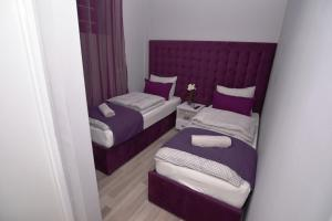 Villa Radica, Affittacamere  Negotino - big - 23