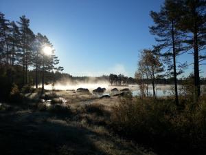 Hamgården Nature Resort Tiveden, Country houses  Tived - big - 21