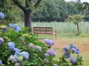 B&B Rezonans, Bed & Breakfast  Warnsveld - big - 75