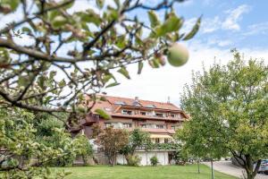 Hotel-Restaurant Vinothek Lamm, Hotel  Bad Herrenalb - big - 38