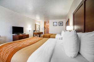Comfort Inn Elko, Hotels  Elko - big - 6
